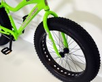 Green FB Front Wheel